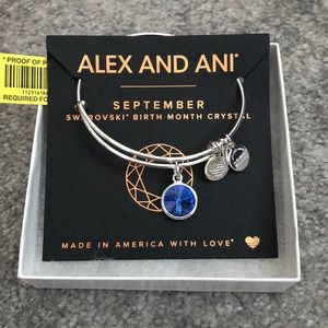Silver Swarovski Birth Month Charm Bracelet